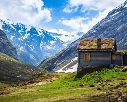 casa de campo termitas