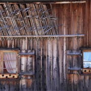 casas de madera con termitas